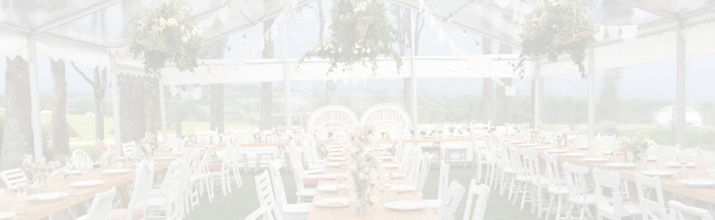 creative event planner with personality
